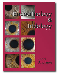 Endocrinology & Iridology by John Andrews